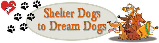 Shelter Dogs to dream dogs logo_Full Header
