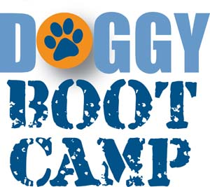 final_bootcamp_logo