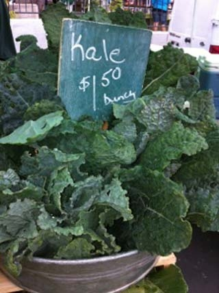 kale-01